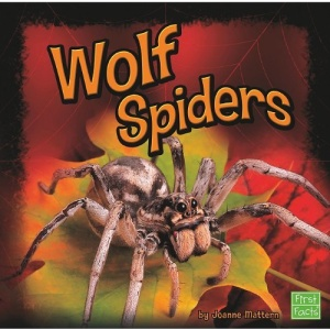 Wolf Spiders (First Facts: Spiders) Joanne Mattern