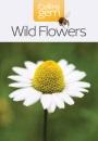 Collins Gem - Wild Flowers