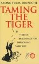Taming the Tiger: Tibetan Teaching for Improving Daily Life - Akong Tulku Rinpoche