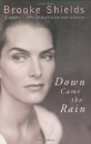 Down Came the Rain: A Mother's Story of Depression and Recovery