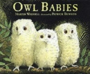 Owl Babies (Little Favourites)
