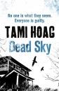 Dead Sky (Kovac & Liska)
