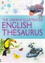 Illustrated Thesaurus (Usborne Illustrated Dictionaries)