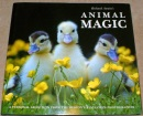 Richard Austin's West Country Animal Magic