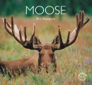 Moose (Worldlife Library)