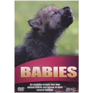 Wildlife - Babies [DVD]