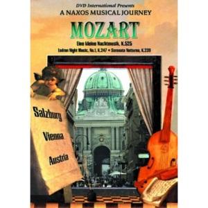 Mozart: Eine Kleine Nachtmusik/Serenade Notturno... [DVD] [2002]