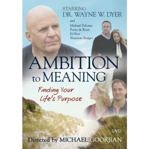 Ambition to Meaning: Finding Your Life's Purposes [DVD] [Region 1] [US Import] [NTSC]