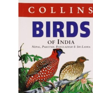 Collins Birds of India (Collins Pocket Guide)