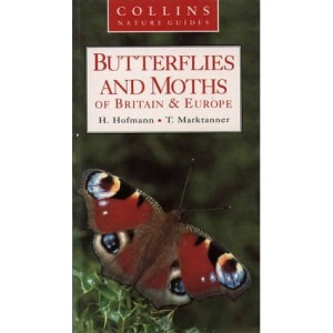 Collins Nature Guide – Butterflies and Moths