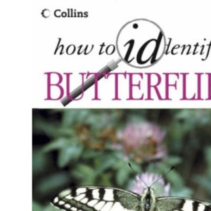 How to Identify – Butterflies
