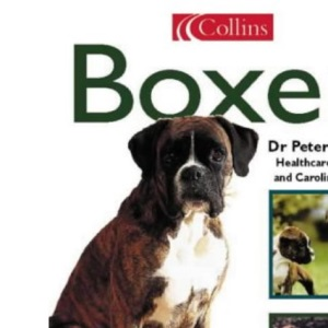 Collins Dog Owner's Guide - Boxer (Collins Dog Owner's Guides)