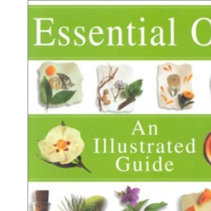 Illustrated Guide Essential Oils: An Illustrated Guide