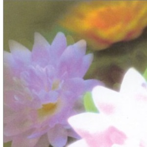 Thorsons First Directions – Chakras (Thorsons First Directions S.)