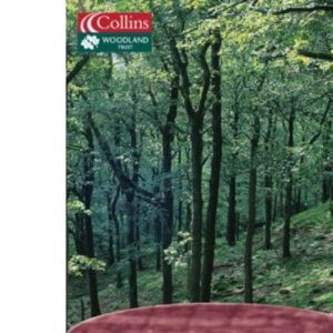 Exploring Woodland - Lake District and the Northwest: Lake District and Northwest