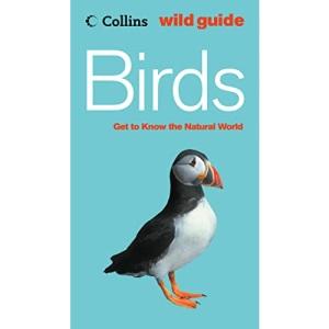 Collins Wild Guide - Birds (Collins Wild Guide S.)