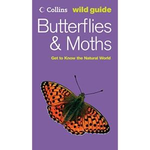 Collins Wild Guide - Butterflies and Moths