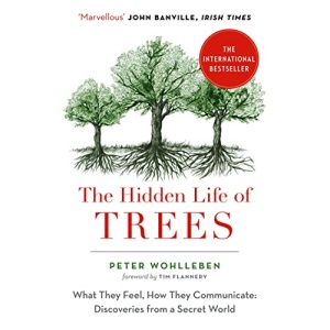 The Hidden Life of Trees: The International Bestseller – What They Feel, How They Communicate