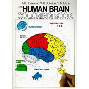 The Human Brain Colouring Book (Coloring Concepts Series)