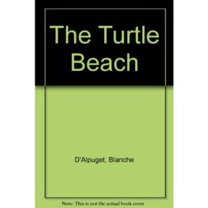 The Turtle Beach