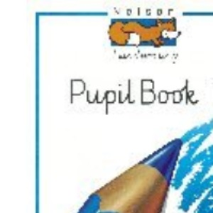 Nelson Handwriting - Pupil Book 1 New Edition (X8): Nelson Handwriting Developing Skills Book 1: Developing Skills Book Bk.1