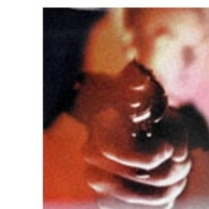 Twelve Tales of Murder (Oxford Twelves)