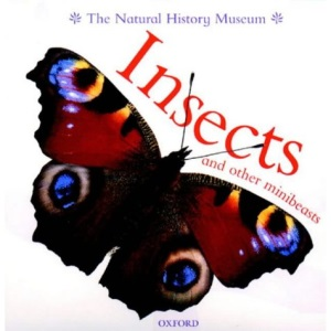 Insects and Other Minibeasts (Animal Close-ups)