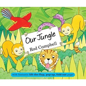 Our Jungle: with fantastic lift-the-flap, pop-up, fold-out page!