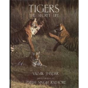 Tigers: The Secret Life