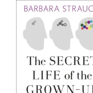 The Secret Life of the Grown-Up Brain: Discover The Surprising Talents of the Middle-Aged Mind