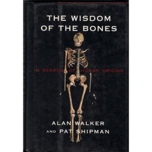 The Wisdom of Bones: In Search of Human Origins