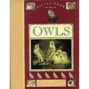 Little Book of Owls (Little Books)