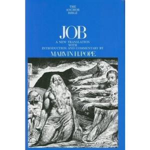 Job (Anchor Bible Commentaries)