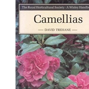 Camellias (Wisley)