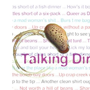 Talking Dirty: 5000 slang phrases