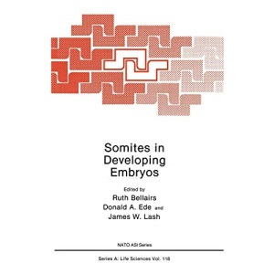 Somites in Developing Embryos: Advanced Research Workshop on Somite Development : Papers (Nato Science Series: A:)