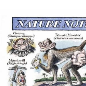 Nature Notes: The Third Collection