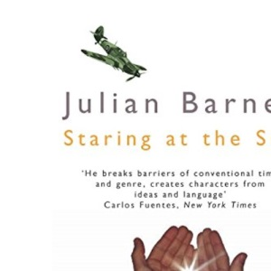 Staring at the Sun (Picador Books)