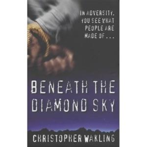 Beneath the Diamond Sky
