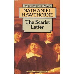 The Scarlet Letter (Case Studies in Contemporary Criticism)