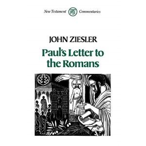 Paul's Letter to the Romans (New Testament commentaries)