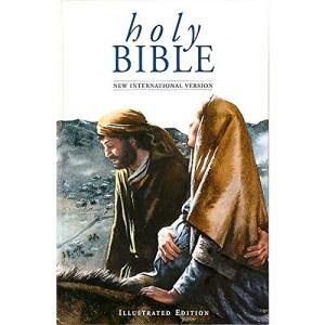 NIV Illustrated Popular Bible: New International Version: Inclusive Language Edition (Bible Niv)