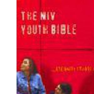 Bible: New International Version Youth Bible (Bible Niv)