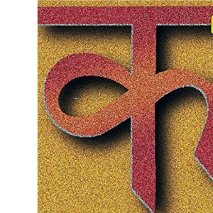 Teach Yourself Hindi Dictionary (TY Dictionaries)