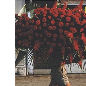 Teach Yourself Writing Poetry (Teach Yourself Creative Writing)