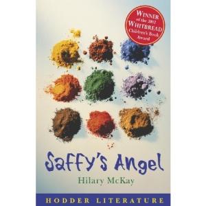 Saffy's Angel: WITH Web Teacher Material (Hodder Literature)