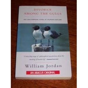 Divorce Among the Gulls