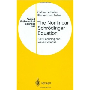 The Nonlinear Schrödinger Equation: Self-Focusing and Wave Collapse (Applied Mathematical Sciences)