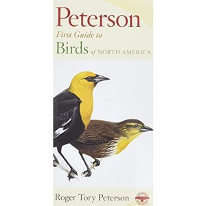First Guide to Birds (Peterson First Guides)