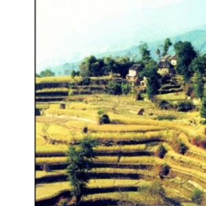 Soils and Environment (Routledge Physical Environment)